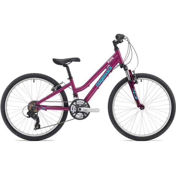Ridgeback Destiny 24 inch wheel Purple Girls Bike